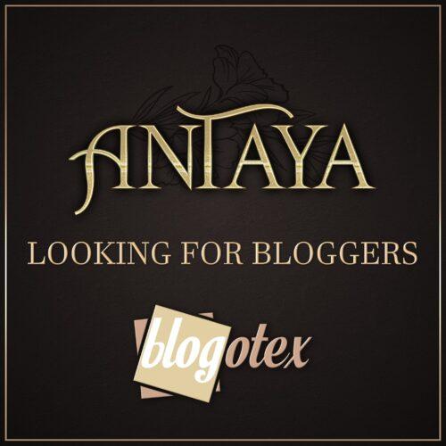 :: ANTAYA :: Blogger search