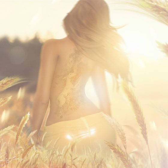 Le bruit du vent dans le blé...